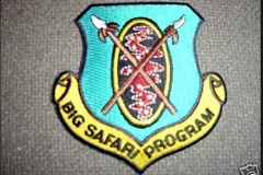Big Safari patch